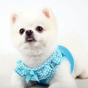 VIVIEN HARNESS B pettorina per cani Puppia