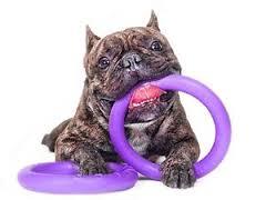 PULLER MINI gioco per cani taglia PICCOLA atossico,galleggiante,resistente,per addestramento