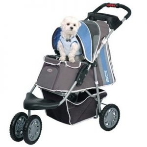 BUGGY FIRST CLASS passeggino INNOPET