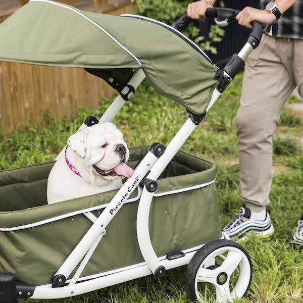 passeggino per cani crea wagon piccolo cane