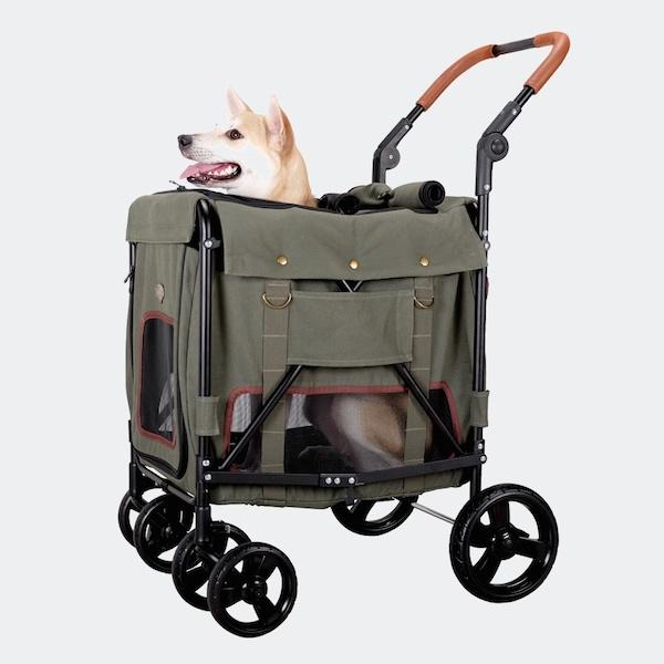 adatto per cani anziani gentle giant