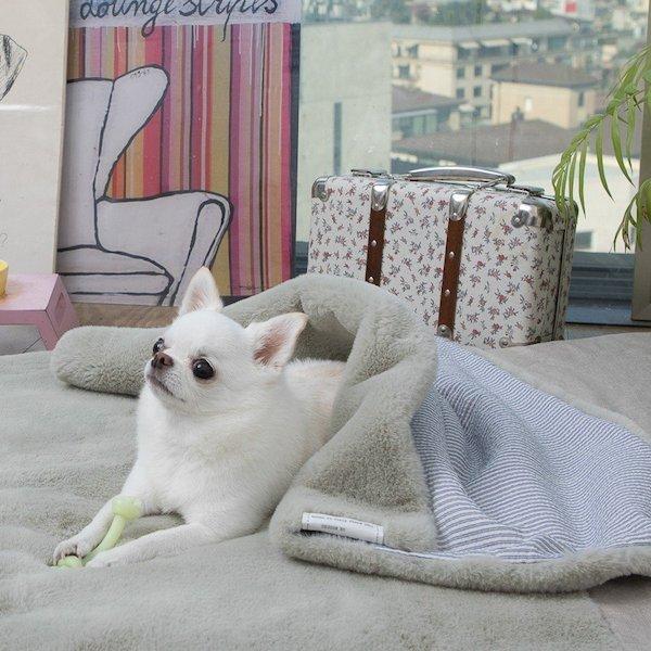 Coperta per cani Louisdog - Magic Winter Blanket